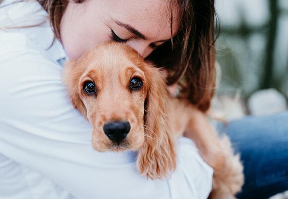 Hundvalp i famnen på kvinna