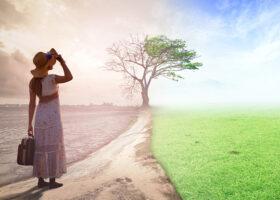 Kvinna på en väg som på ena sidan grönskar och andra sidan är karg